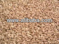 Eucalyptus wood for pulp/chips/biomasse