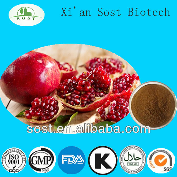 Natural Fruit Powder Organic Pomegranate Peel Extract