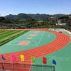 IAAF Approved Polyurethane Surface Running Track