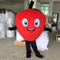 Apple mascot costume/fruit mascot costume for sale