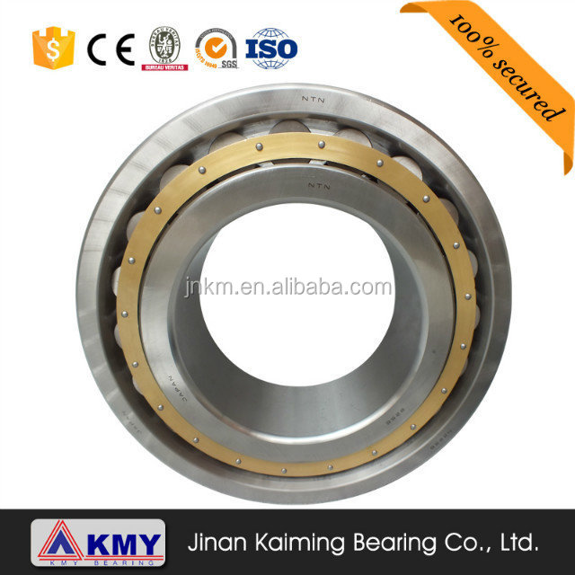 Double row full complement Cylindrical roller bearings for oil pump NNF 5020