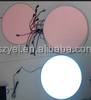 Wholesalecuttable El Backlight Electroluminescent El Sheet
