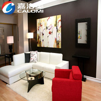 Calomi Elegant and beautiful wholesale interior wall paint
