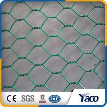 China Leading Technology 25mm chicken hexagonal wire mesh