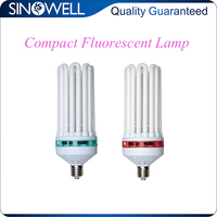 China Top 3 Manufacturer Hydroponics 600w CFL Compact Fluorescent Lamp Grow Light