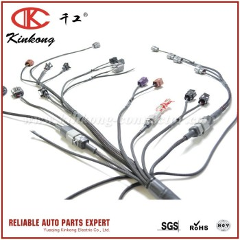 Kinkong Electrical Automobile Wire Harness Cable Assembly Engine Wiring Harness