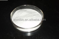 Top quality Sarcosine 99%, N-methylglycine powder