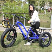 powerful engine fat tire 3 three wheel electric bike cargo tricycle with big strong baskets 500w