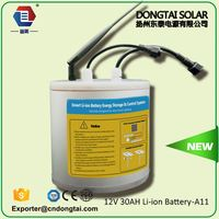 rechargeable lithium starting battery 12v 30ah for motorcycle/LANYU030DZYAA570