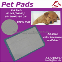 Competitive Price High Quality Disposable Urine Absorbent Pet Pad Manufacturer from China