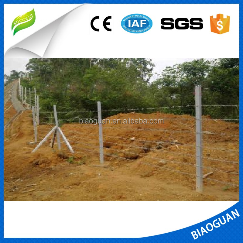 PVC coated barbed wire with chain link fence nice appearance high security