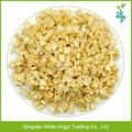 High quality dehydrated regular apple dices