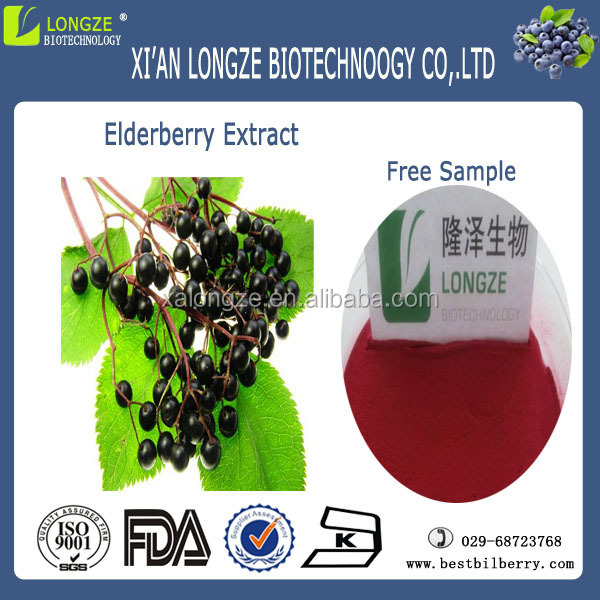 bulk herbal elderberry extract 10:1