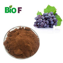 red globe grape seeds/grape seed resveratrol/grape seed extract opc 95%