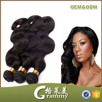 wholesales china single donor genesis virgin hair/malasian wavy hair