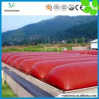 Veniceton China 500m3 biogas digestor