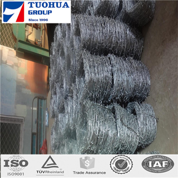 cheap stainless steel barbed wire pvc coated barbed wire