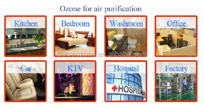 Bacteria Detecting Ozone Machine for vegetables and fruits Cleaning purifier fresher