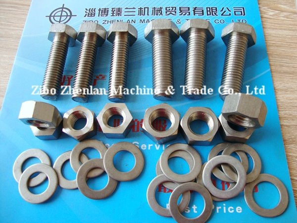 China factory Pure Titanium and Alloy Titanium GR5 Hex Nuts price