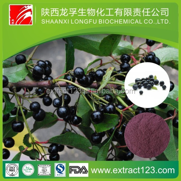 Acai Berry/ Brazilian Acai P.E.& acai berry powder extract