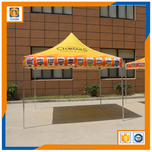 Outdoor high quality commercial advertising folding canopy 3x3/10x10' tent