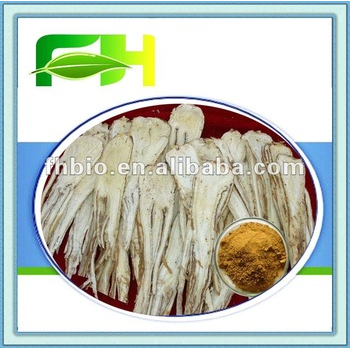 Hight Quality Pharmaceutical grade Dong Quai Extract