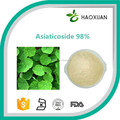Fctory supply Gotu Kola Extract 20%40% Asiaticosides,CAS No.:16830-15-2