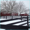 black hot-dip galvanized powder coated pasture aluminum tube fence for wholesaler