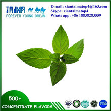 Mint Toothpaste Flavoring Essence