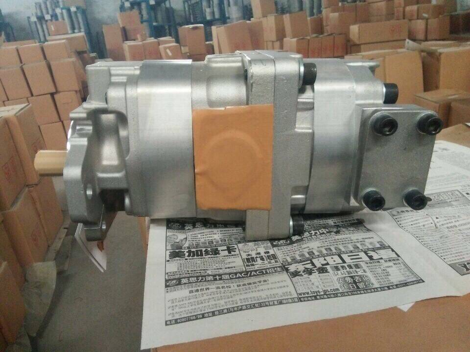 2016 new crane pump 705-55-13020 and 705-55-24110 all models for sale