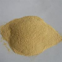 Yeast powder 40% 45% 50% 55% 60%