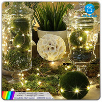 decorative running led lights for christmas,christmas lights fuse plug