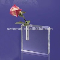 lucid square acrylic vase or acrylic paperweight