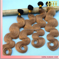 New Arrival Wholesale 100% Unprocessed Brazilian human hair Bump Hair