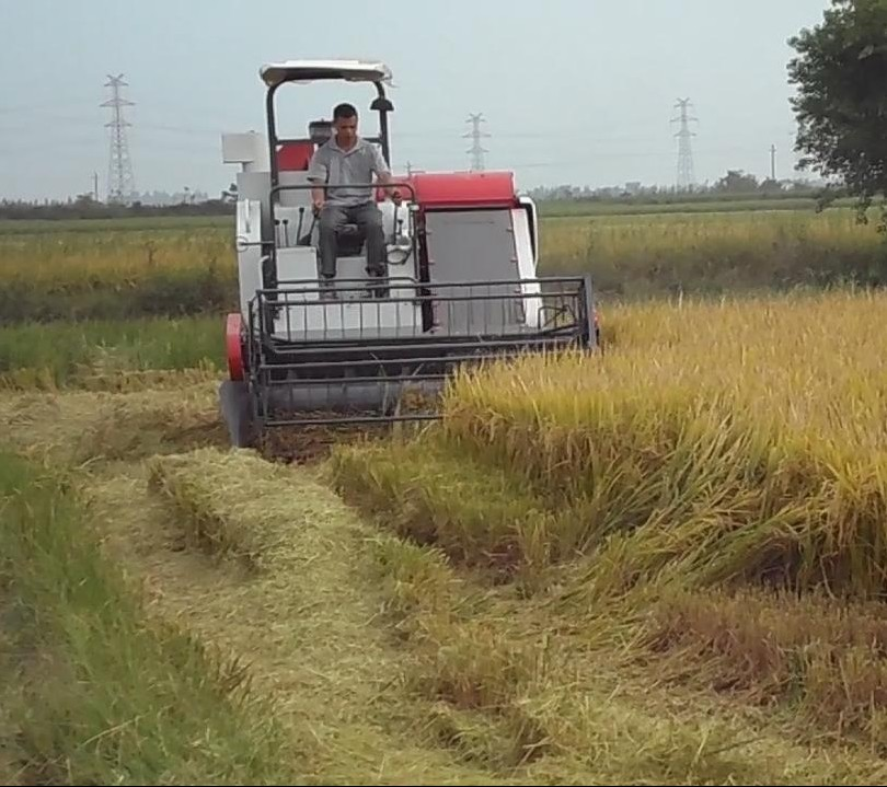 small rice harvester 4LZ-2.0D