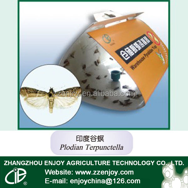 Plodia interpunctella disposable fly trap