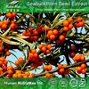 100% Natural and Food Grade Seabuckthorn Fruit Extract 10:1