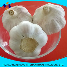 red fresh garlic, size5.5cm