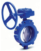 Lug Type Manual Carbon Steel Butterfly Valve