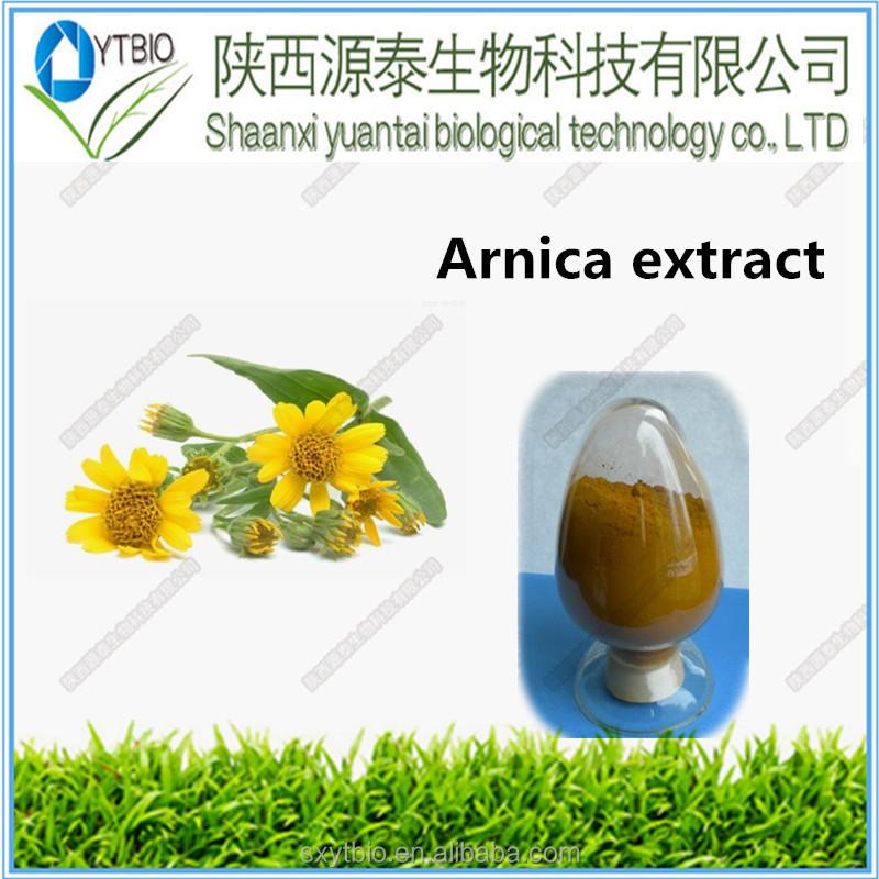 Supply natural Herbal Medicine Arnica flower Extract powder