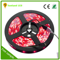 30LEDs/m RGBW 12v waterproof battery powered led strip light for outdoor led strip