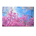 Season Landscape Canvas Painting/Happy Spring Scenery Canvas Wall Art/Floral Flowers Print on Canvas