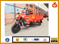 Qijian II model OEM product 200cc 250cc 300cc engine with hot popular tricycle