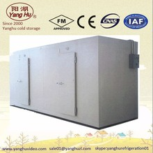 mobile cold freezer refrigerated container storage