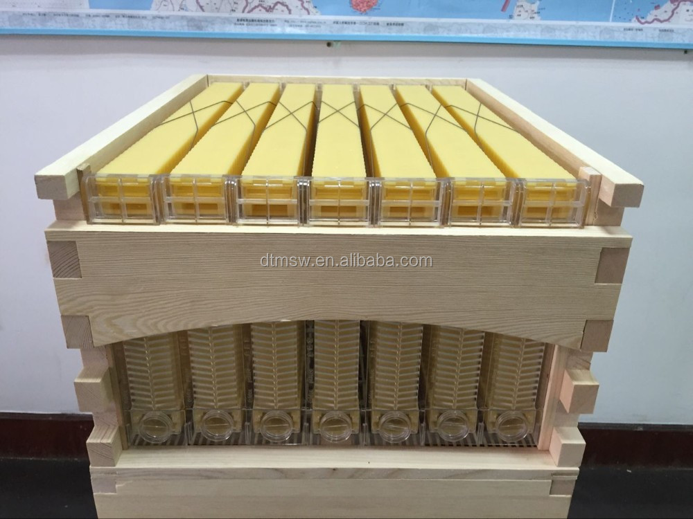 Best selling Australia beehive honey flow hive