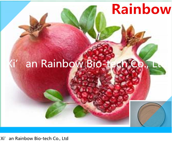 pomegranate extract extract powder Hot selling antioxidants