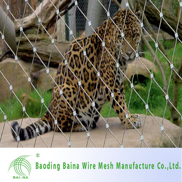 mesh fence for sheep/metal wire fence /bird netting for sale