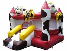 Entertainment Park Hottest Inflatable Bouncer Slide