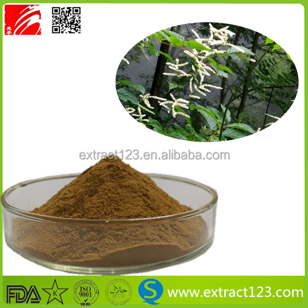 Wholesale price Black Cohosh Extract 2.5% Triterpene Glycosides