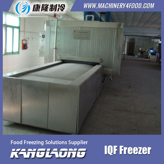 Large Capacity IQF Cheese Industrial Freezer